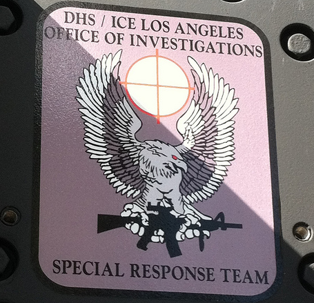 dhs-ice-srt.png